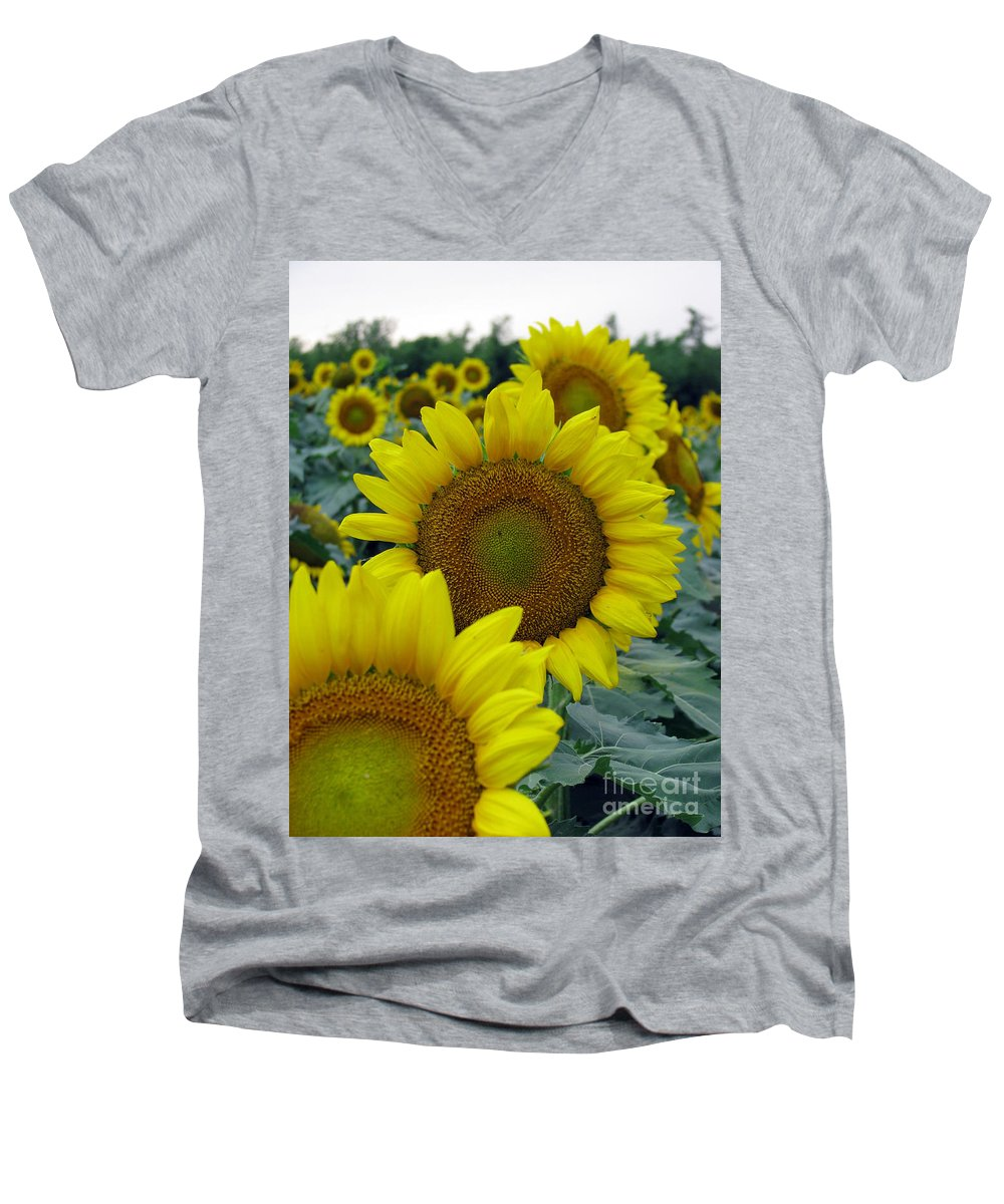Sunflowers Men's V-Neck T-Shirt featuring the photograph Sunflower Series by Amanda Barcon