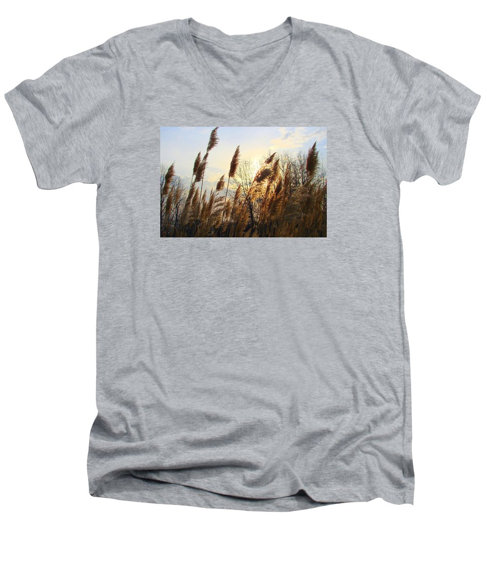 Pampasgrass Men's V-Neck T-Shirt featuring the photograph Amber Waves Of Pampas Grass by J R Seymour