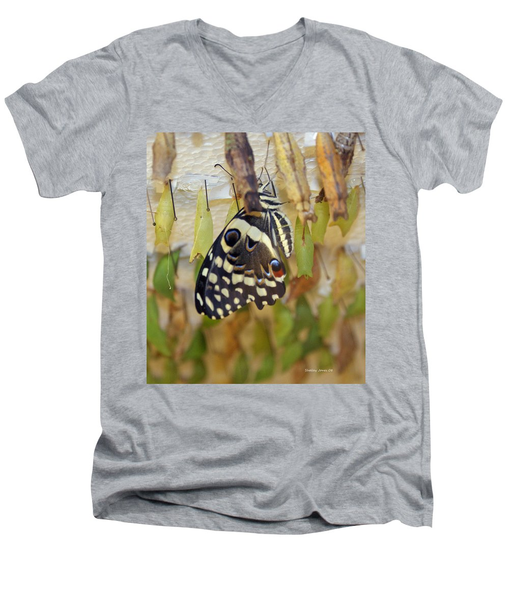 Butterfly Men's V-Neck T-Shirt featuring the photograph And Life Begins by Shelley Jones