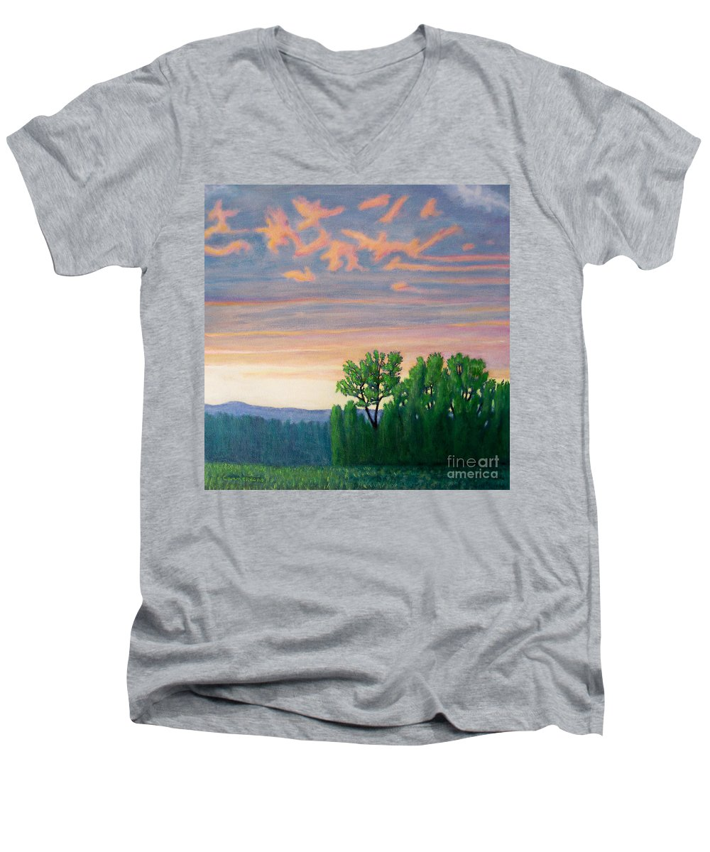 Landscape Men's V-Neck T-Shirt featuring the painting Balsa Road by Brian Commerford