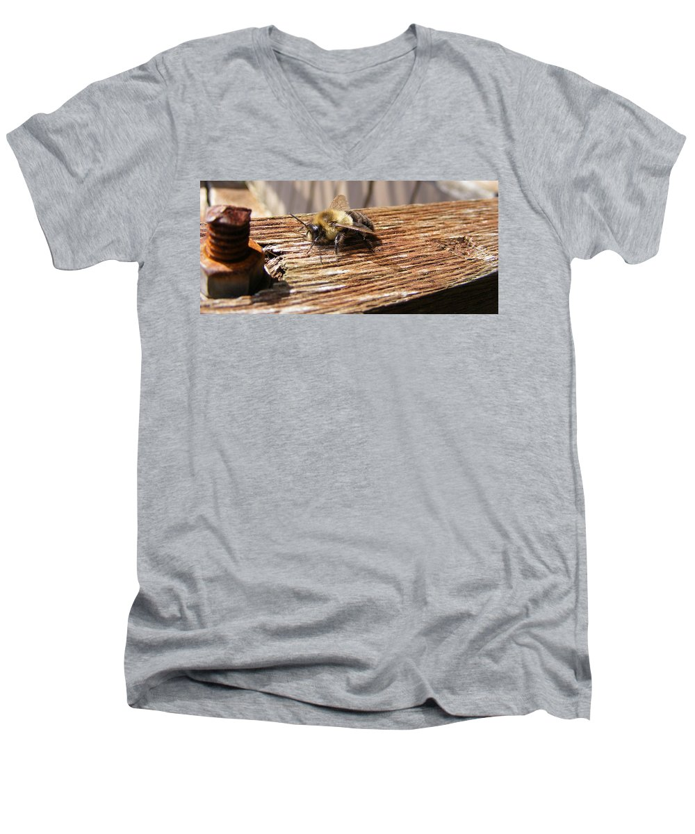 Bee Men's V-Neck T-Shirt featuring the photograph Bee-u-tiful by Ed Smith