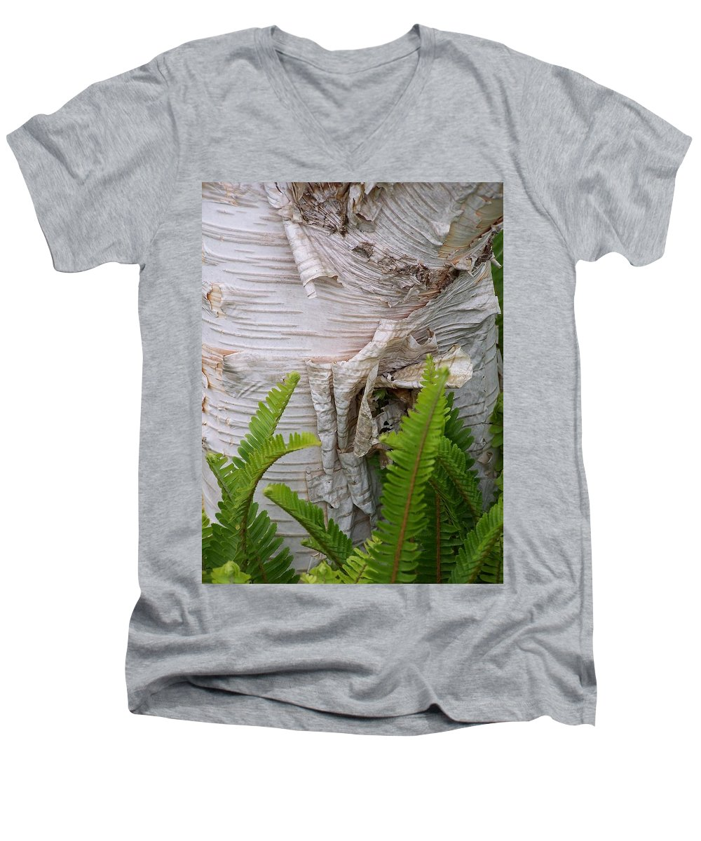 Tree Men's V-Neck T-Shirt featuring the photograph Birch Fern by Gale Cochran-Smith