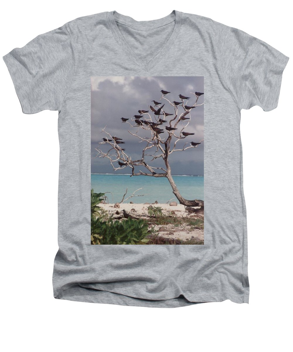 Charity Men's V-Neck T-Shirt featuring the photograph Black Birds by Mary-Lee Sanders