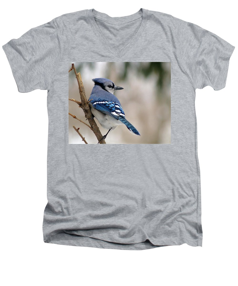 Blue Jay Men's V-Neck T-Shirt featuring the photograph Blue Jay by Gaby Swanson