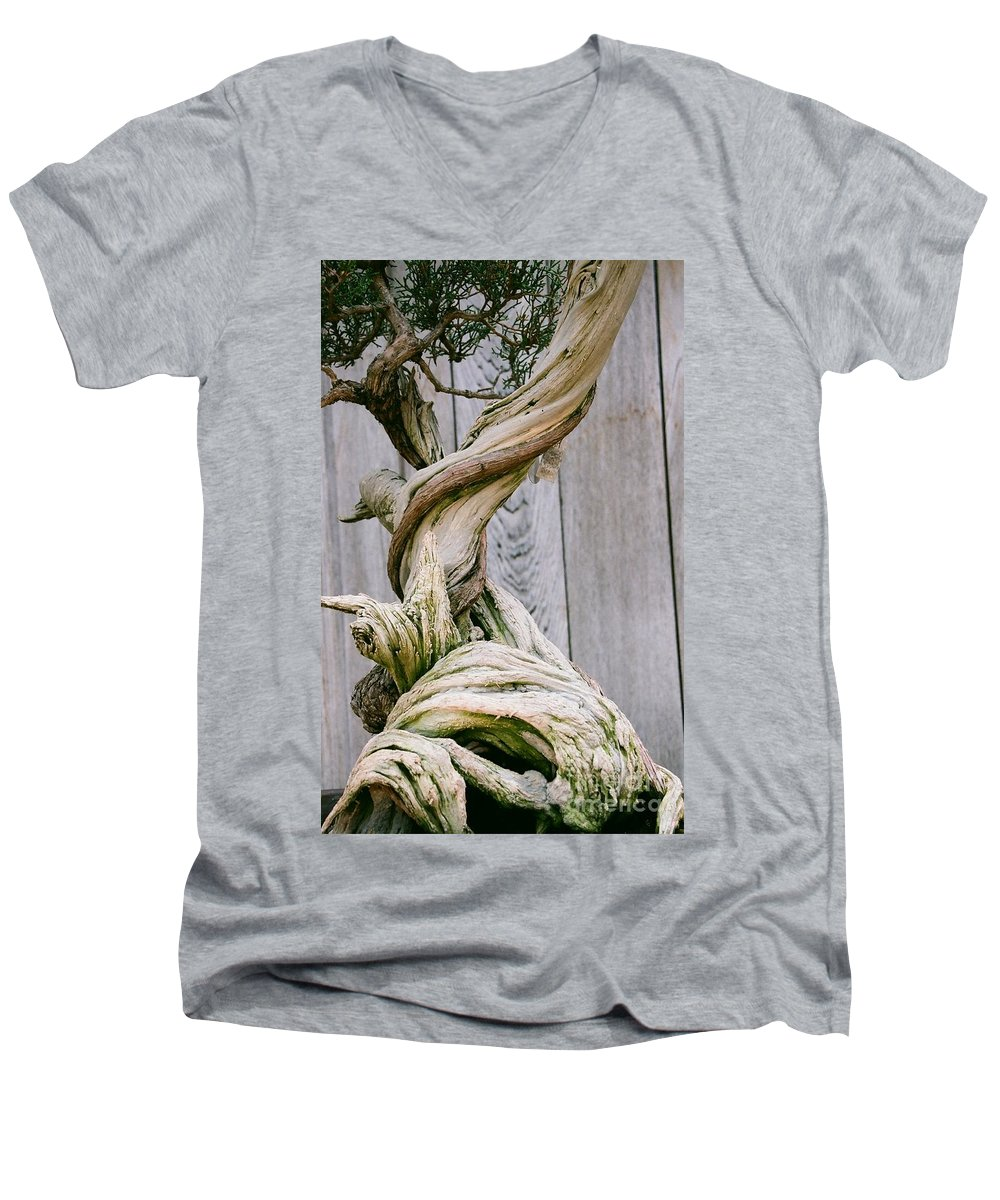 Tree Men's V-Neck T-Shirt featuring the photograph Bonsai by Dean Triolo