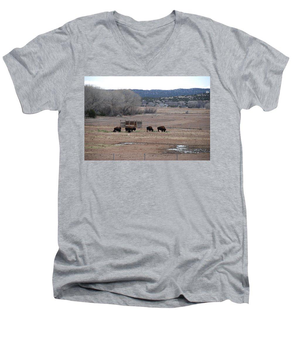 Buffalo Men's V-Neck T-Shirt featuring the photograph Buffalo New Mexico by Rob Hans