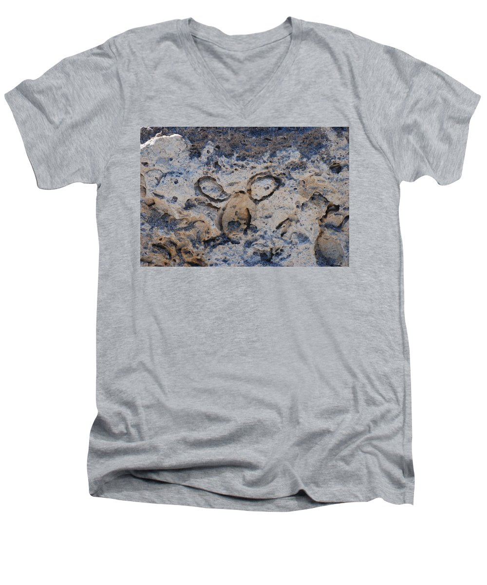 Ocean Men's V-Neck T-Shirt featuring the photograph Carved Catface by Rob Hans