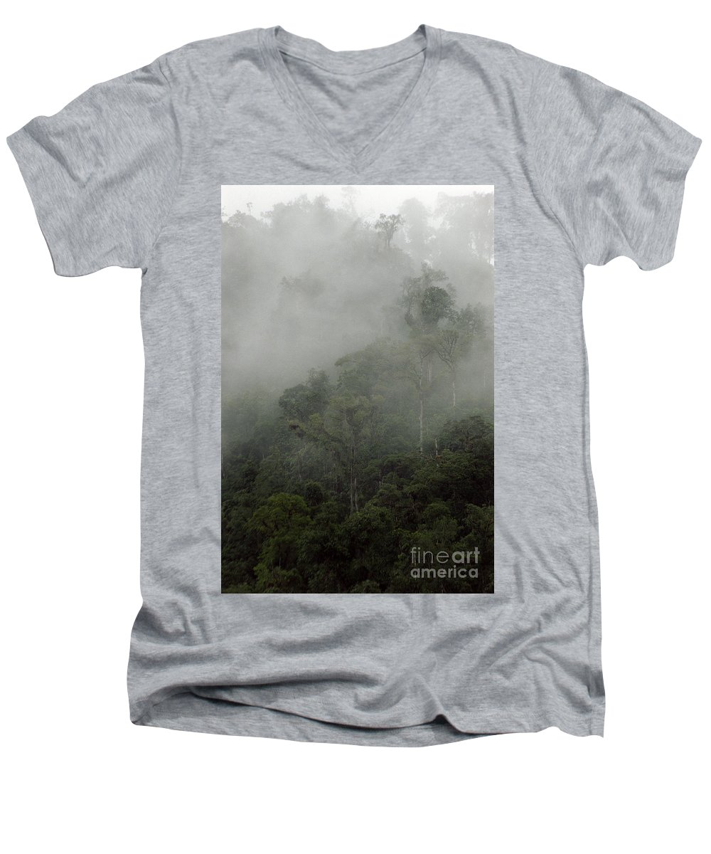 Rainforest Men's V-Neck T-Shirt featuring the photograph Cloud Forest by Kathy McClure
