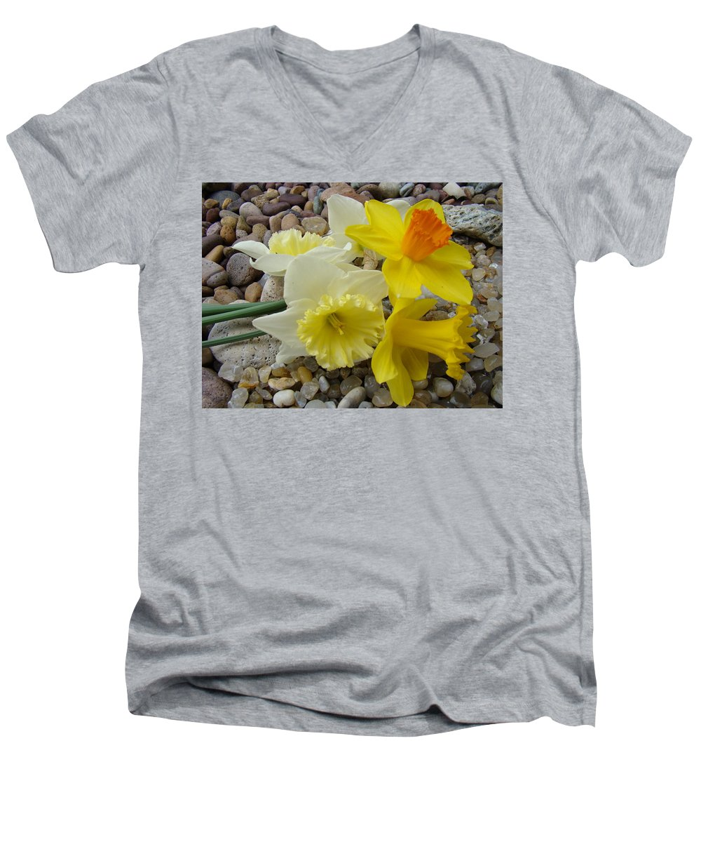 �daffodils Artwork� Men's V-Neck T-Shirt featuring the photograph Daffodils Flower Artwork 29 Daffodil Flowers Agate Rock Garden Floral Art Prints by Baslee Troutman