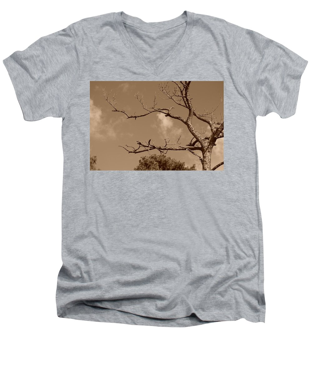 Sepia Men's V-Neck T-Shirt featuring the photograph Dead Wood by Rob Hans
