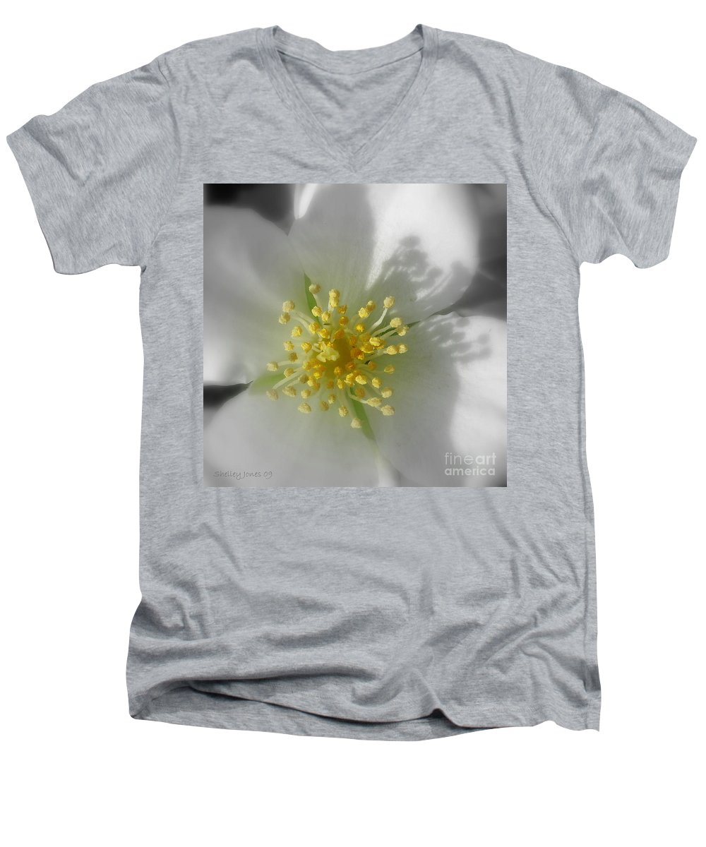 Photography Men's V-Neck T-Shirt featuring the photograph Dogwood by Shelley Jones