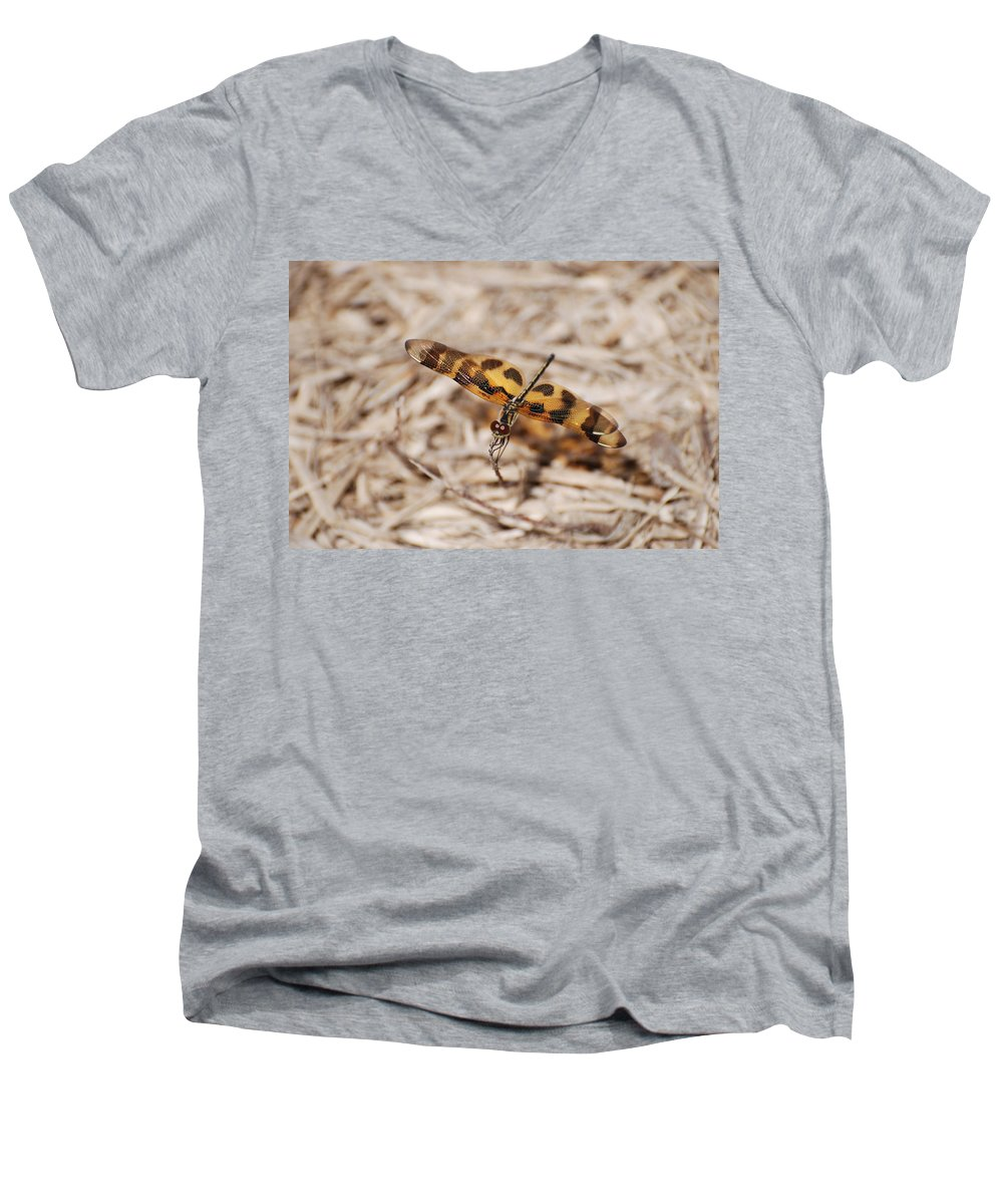 Nature Men's V-Neck T-Shirt featuring the photograph Dragon Fly by Rob Hans
