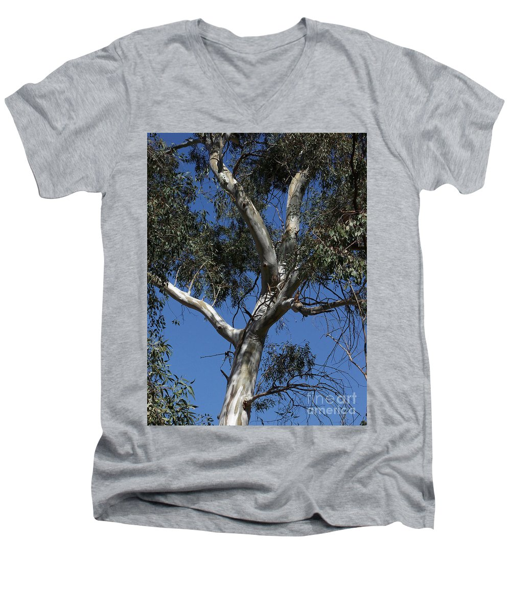 Trees Men's V-Neck T-Shirt featuring the photograph Eucalyptus by Kathy McClure