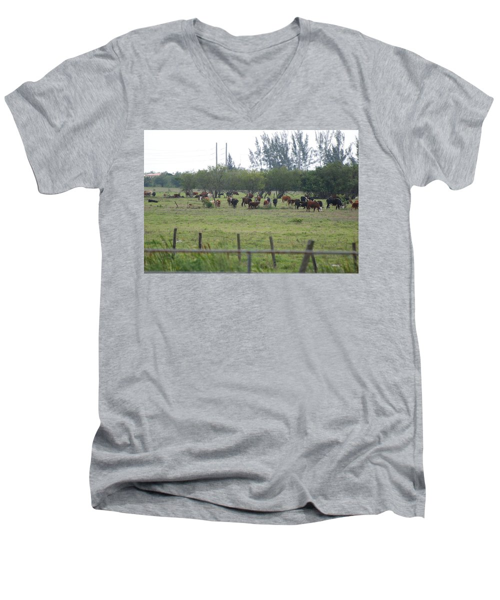 Trees Men's V-Neck T-Shirt featuring the photograph Florida Ranch by Rob Hans