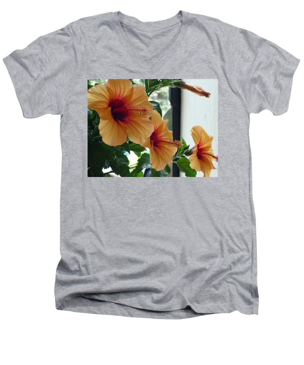 Photography Flower Floral Bloom Hibiscus Peach Men's V-Neck T-Shirt featuring the photograph Friends For A Day by Karin Dawn Kelshall- Best