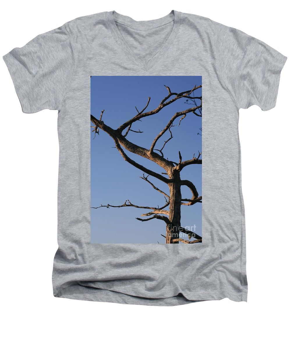 Tree Men's V-Neck T-Shirt featuring the photograph Gnarly Tree by Nadine Rippelmeyer