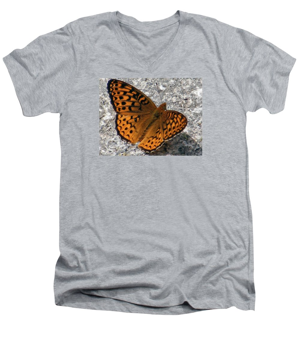 Butterfly Men's V-Neck T-Shirt featuring the photograph Great Spangled Fritterlary by Dave Martsolf