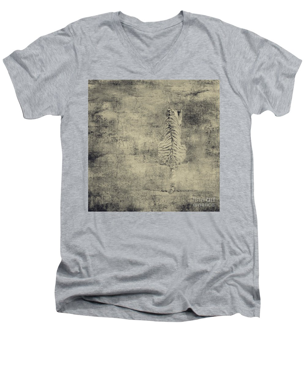 Dipasquale Men's V-Neck T-Shirt featuring the photograph Have You Comprehended... by Dana DiPasquale