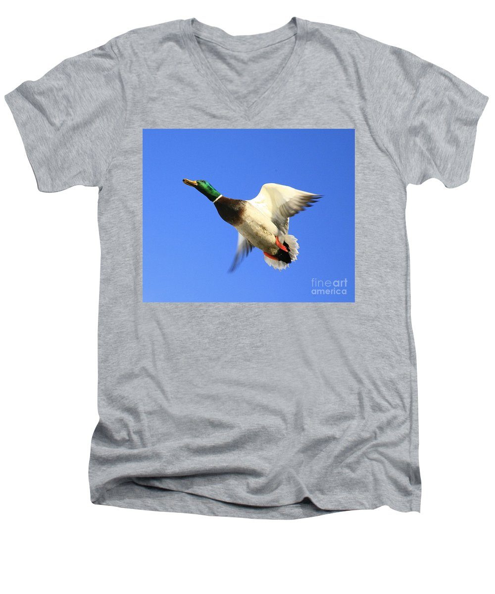 Duck Men's V-Neck T-Shirt featuring the photograph Heads Up by Robert Pearson