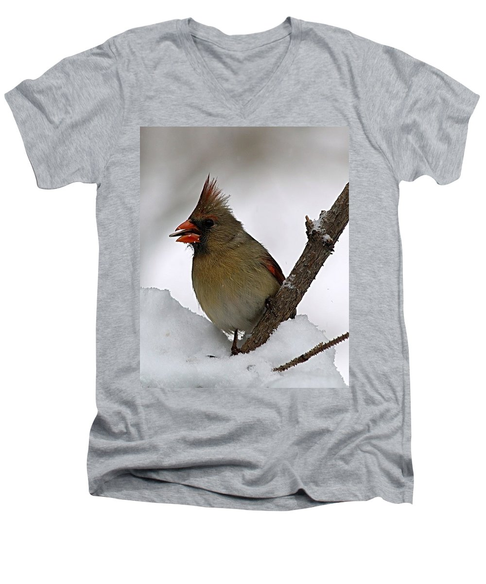Bird Men's V-Neck T-Shirt featuring the photograph I Love Seeds by Gaby Swanson