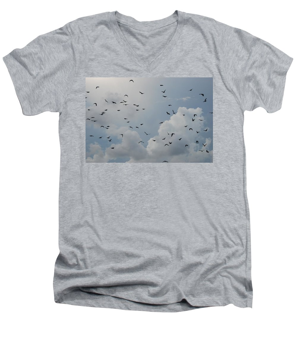 Birds Men's V-Neck T-Shirt featuring the photograph In Flight by Rob Hans