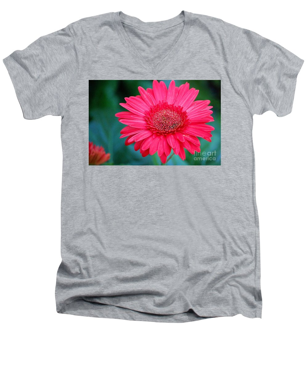 Gerber Daisy Men's V-Neck T-Shirt featuring the photograph In The Pink by Debbi Granruth