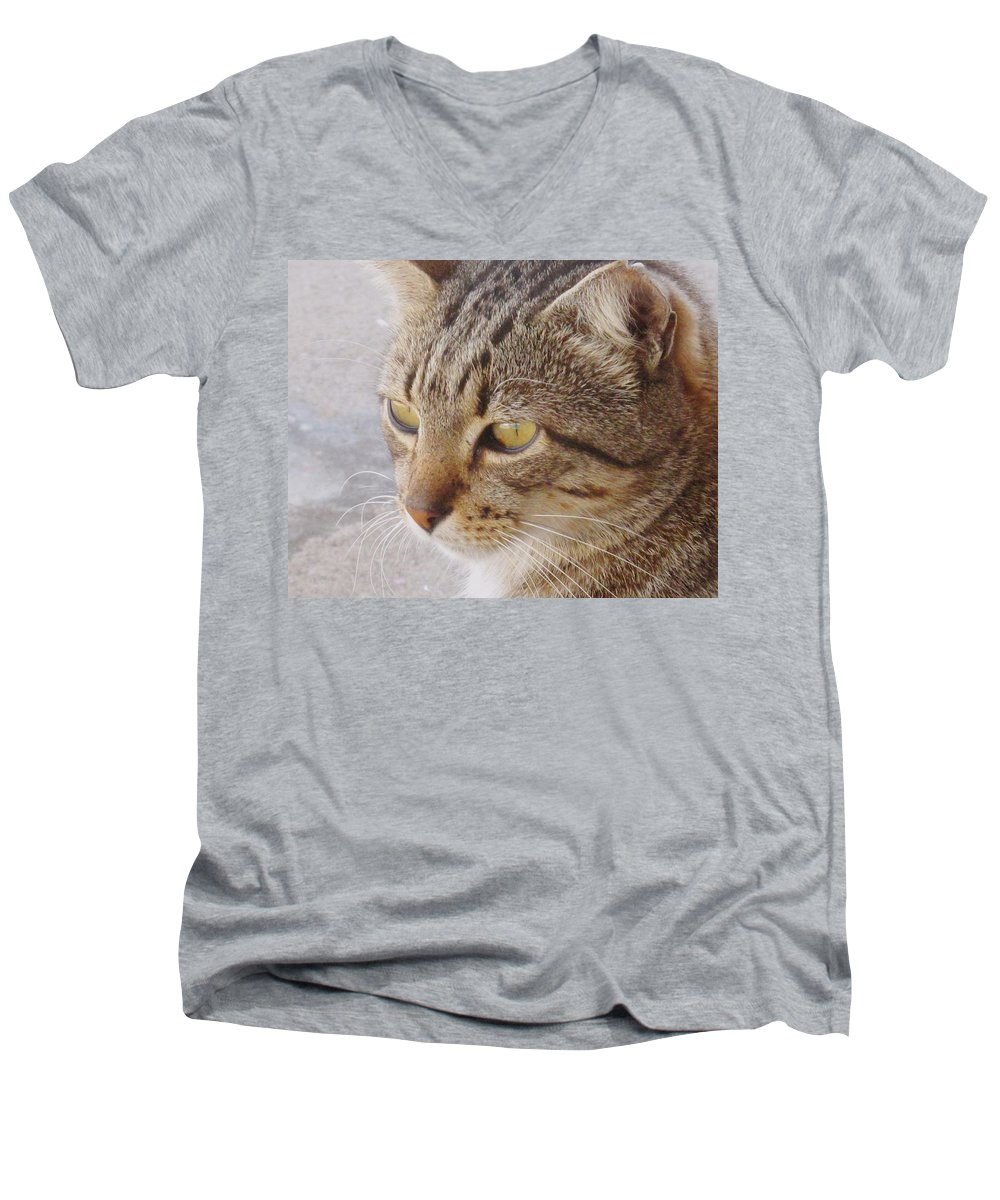 Cat Men's V-Neck T-Shirt featuring the photograph King Cat by Ian MacDonald