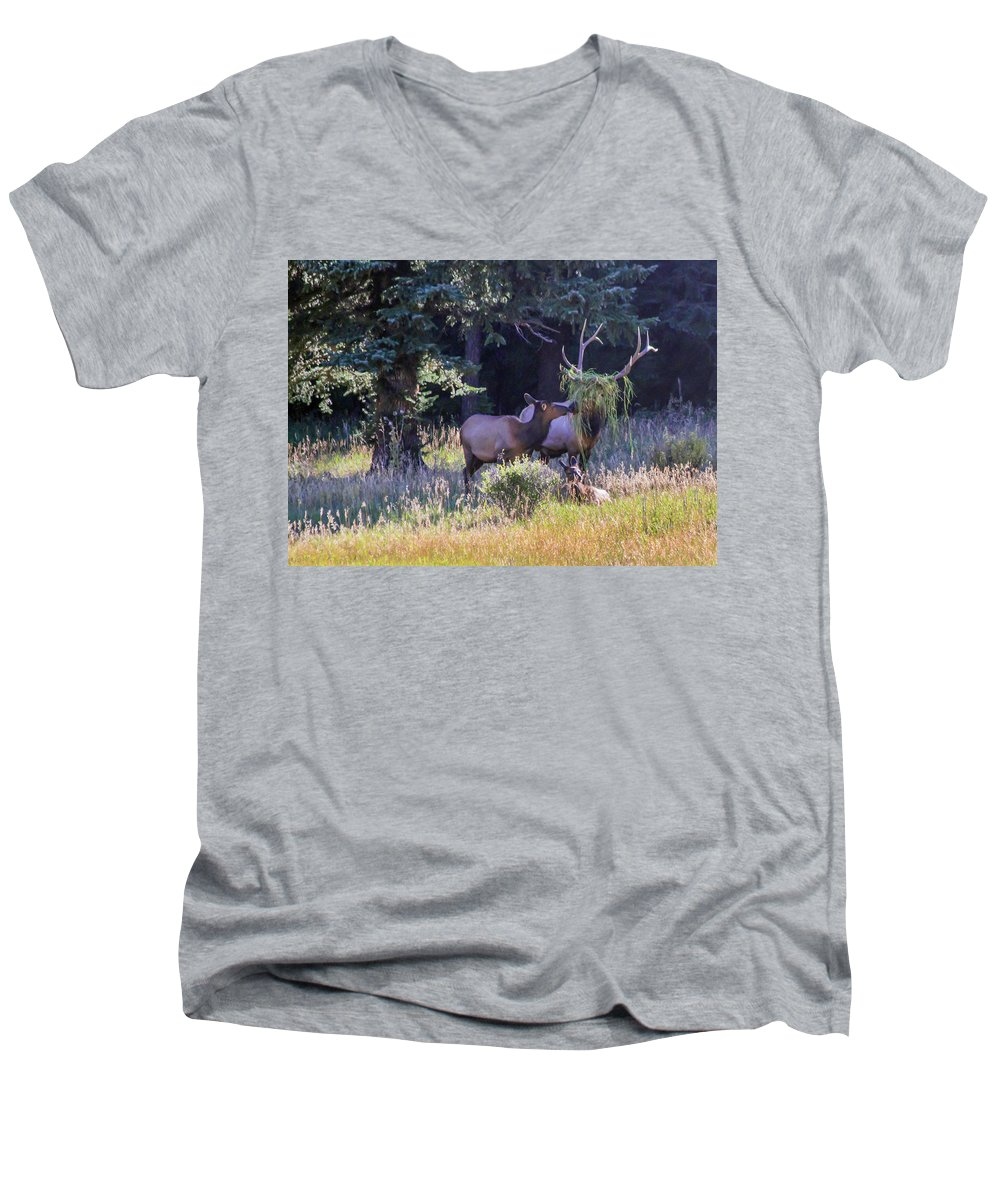 Elk Men's V-Neck T-Shirt featuring the photograph Loving The New Hairdo by Shane Bechler