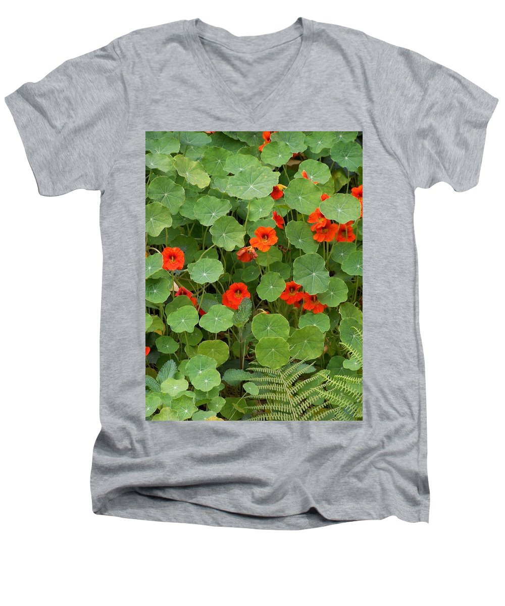 Nasturtiums Men's V-Neck T-Shirt featuring the photograph Nasturtiums by Gale Cochran-Smith