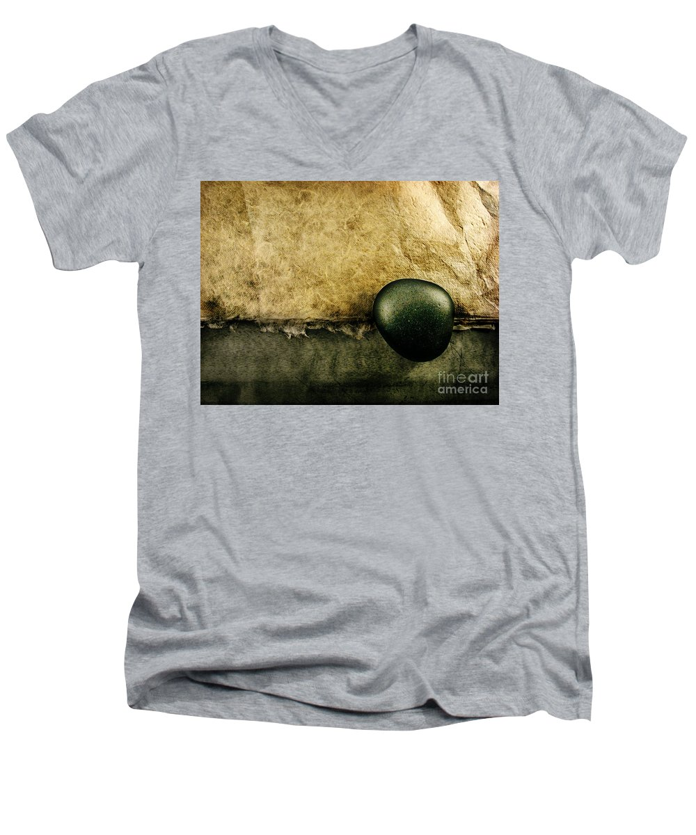 Dipasquale Men's V-Neck T-Shirt featuring the photograph Obligatory by Dana DiPasquale