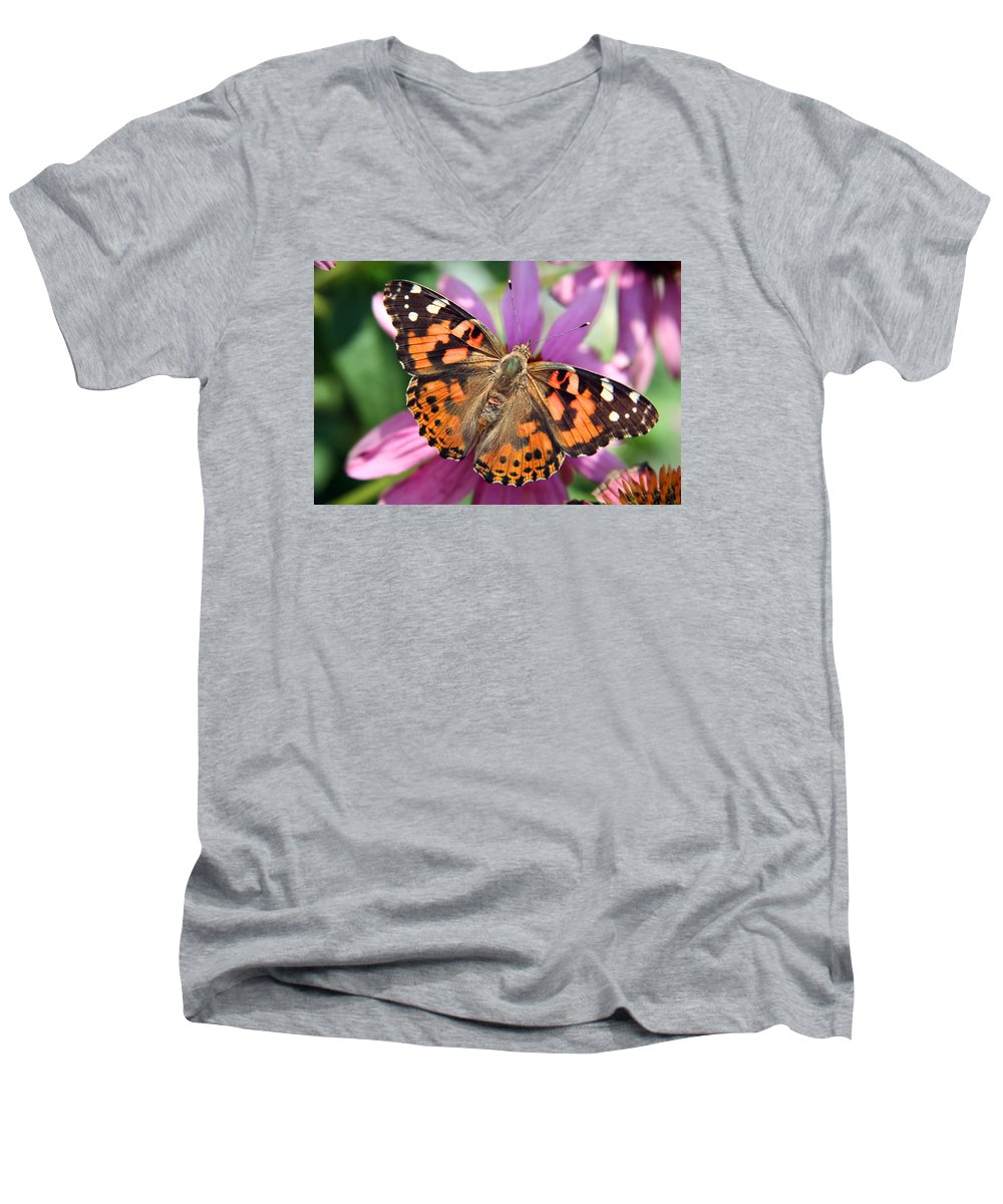 Painted Lady Men's V-Neck T-Shirt featuring the photograph Painted Lady Butterfly by Margie Wildblood
