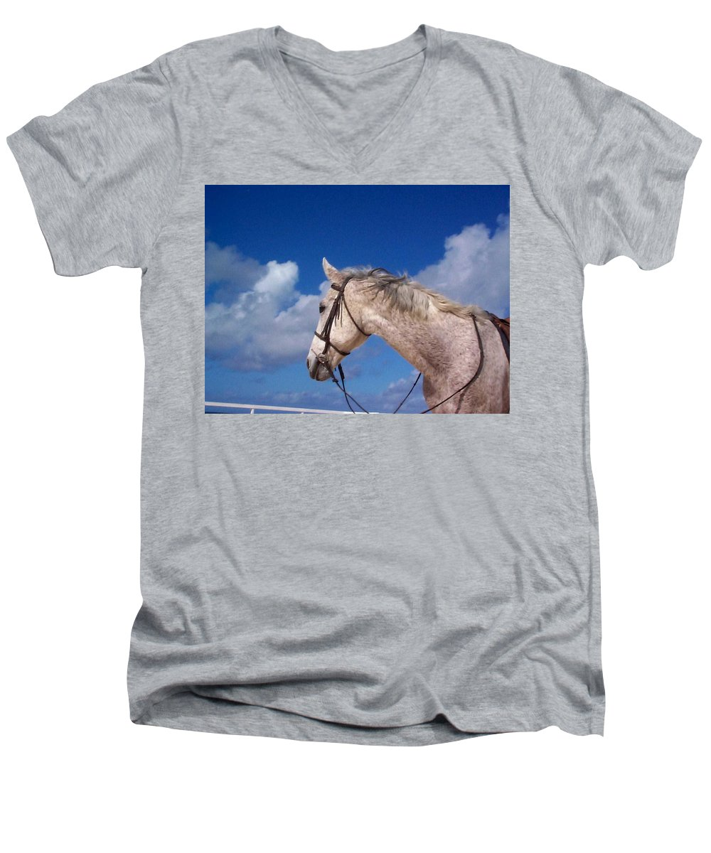 Charity Men's V-Neck T-Shirt featuring the photograph Pancho by Mary-Lee Sanders