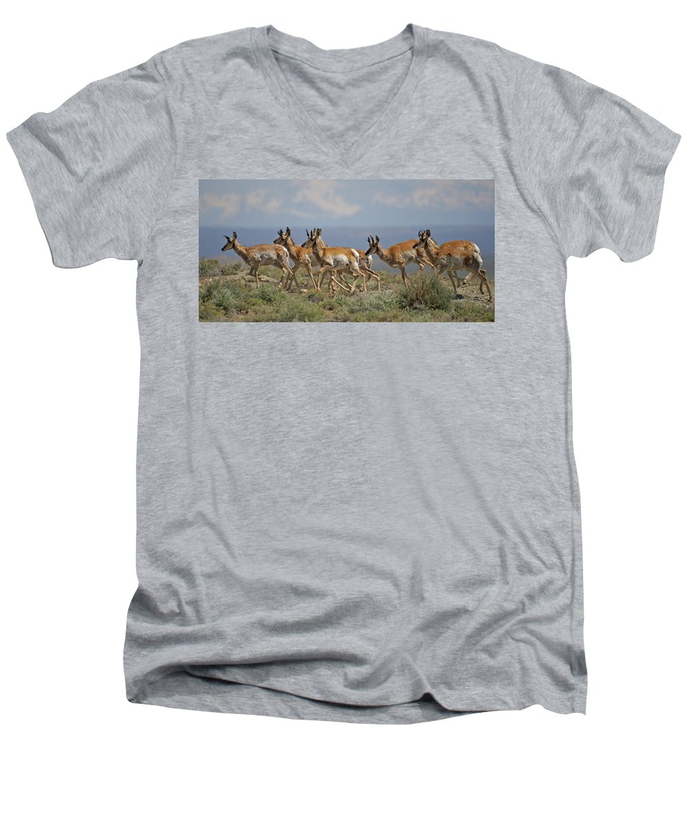 Pronghorn Men's V-Neck T-Shirt featuring the photograph Pronghorn Antelope Running by Heather Coen