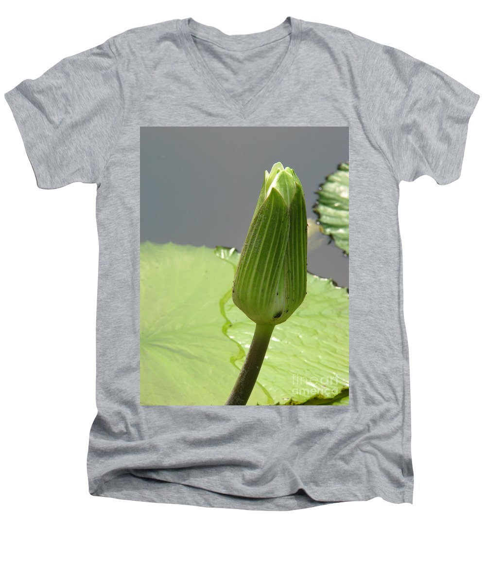 Lilly Men's V-Neck T-Shirt featuring the photograph Ready To Bloom by Amanda Barcon