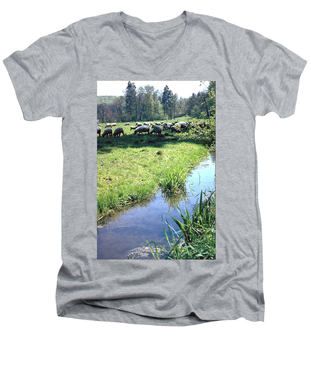 Sheep Men's V-Neck T-Shirt featuring the photograph Sheep by Flavia Westerwelle