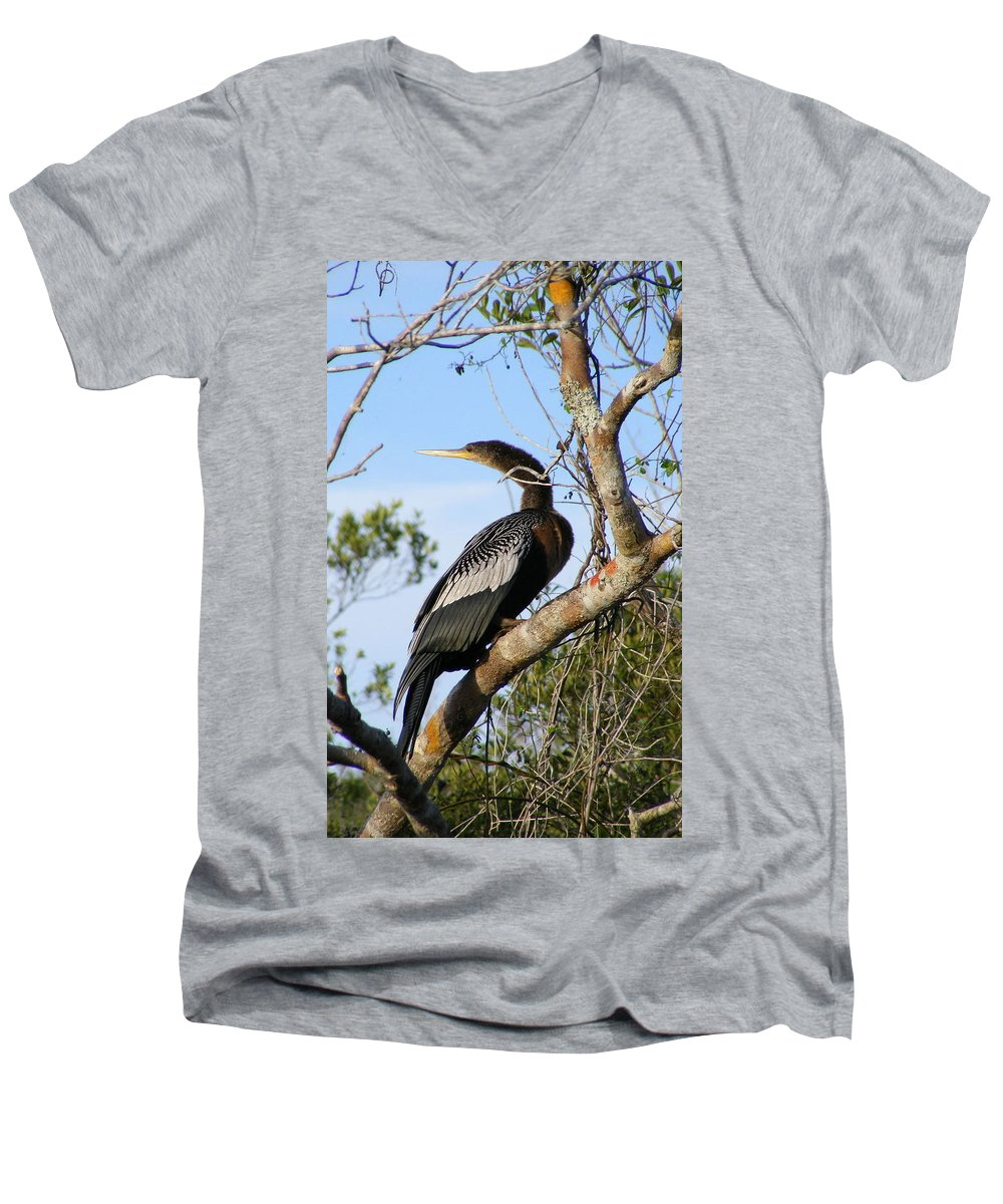 Bird Men's V-Neck T-Shirt featuring the photograph Strike A Pose by Ed Smith