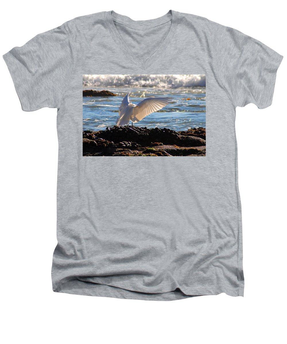 Clay Men's V-Neck T-Shirt featuring the photograph Strut by Clayton Bruster