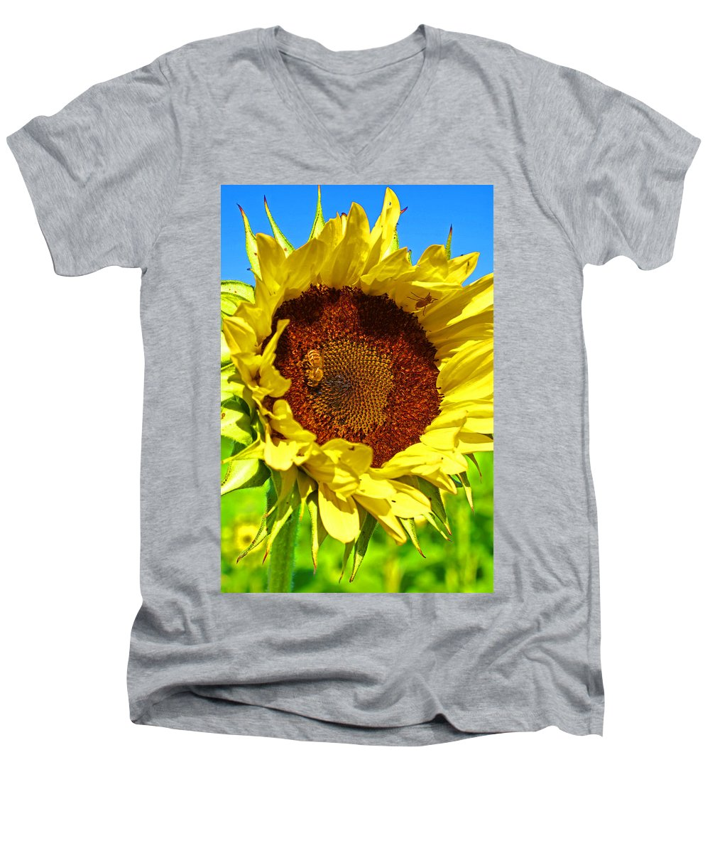 Pastoral Men's V-Neck T-Shirt featuring the photograph Sunflower And Bee by Heather Coen