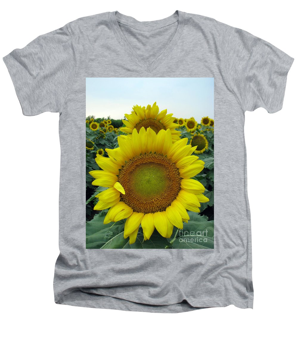 Sunflowers Men's V-Neck T-Shirt featuring the photograph Sunflowers by Amanda Barcon