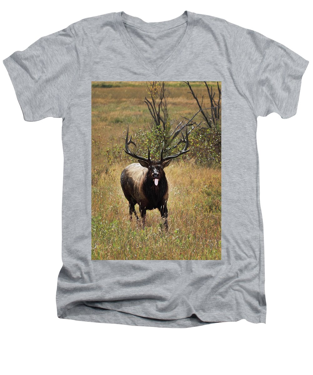 Tongue Men's V-Neck T-Shirt featuring the photograph That Moment When by Shane Bechler