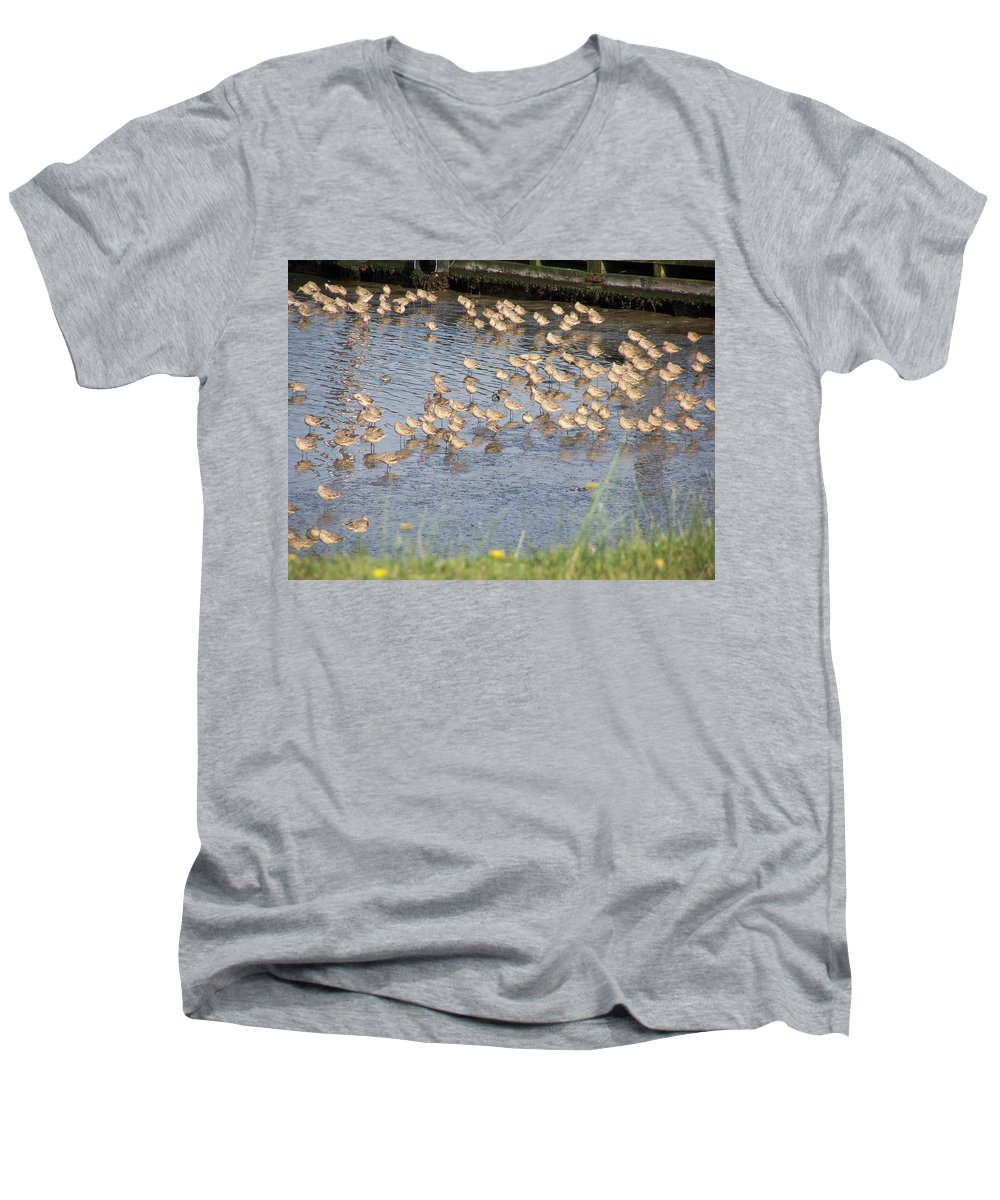 Seabirds Men's V-Neck T-Shirt featuring the photograph The Plovers by Laurie Kidd