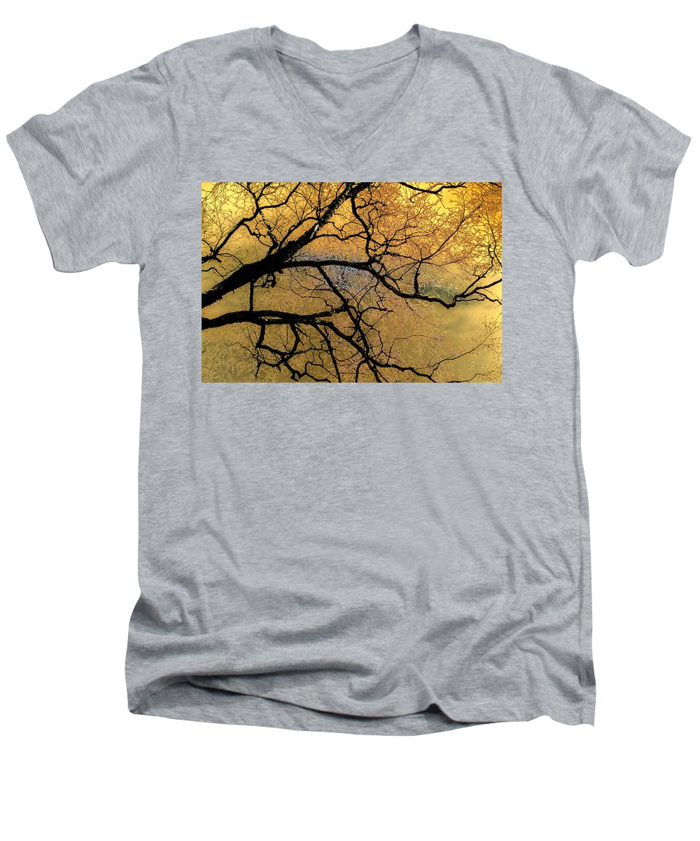 Scenic Men's V-Neck T-Shirt featuring the photograph Tree Fantasy 7 by Lee Santa