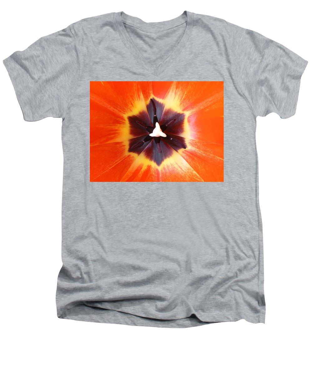 Tulip Men's V-Neck T-Shirt featuring the photograph Tulip by Daniel Csoka