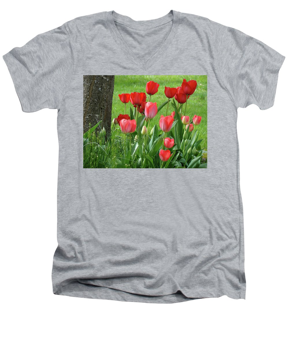 �tulips Artwork� Men's V-Neck T-Shirt featuring the photograph Tulips Flowers Art Prints Spring Tulip Flower Artwork Nature Art by Baslee Troutman