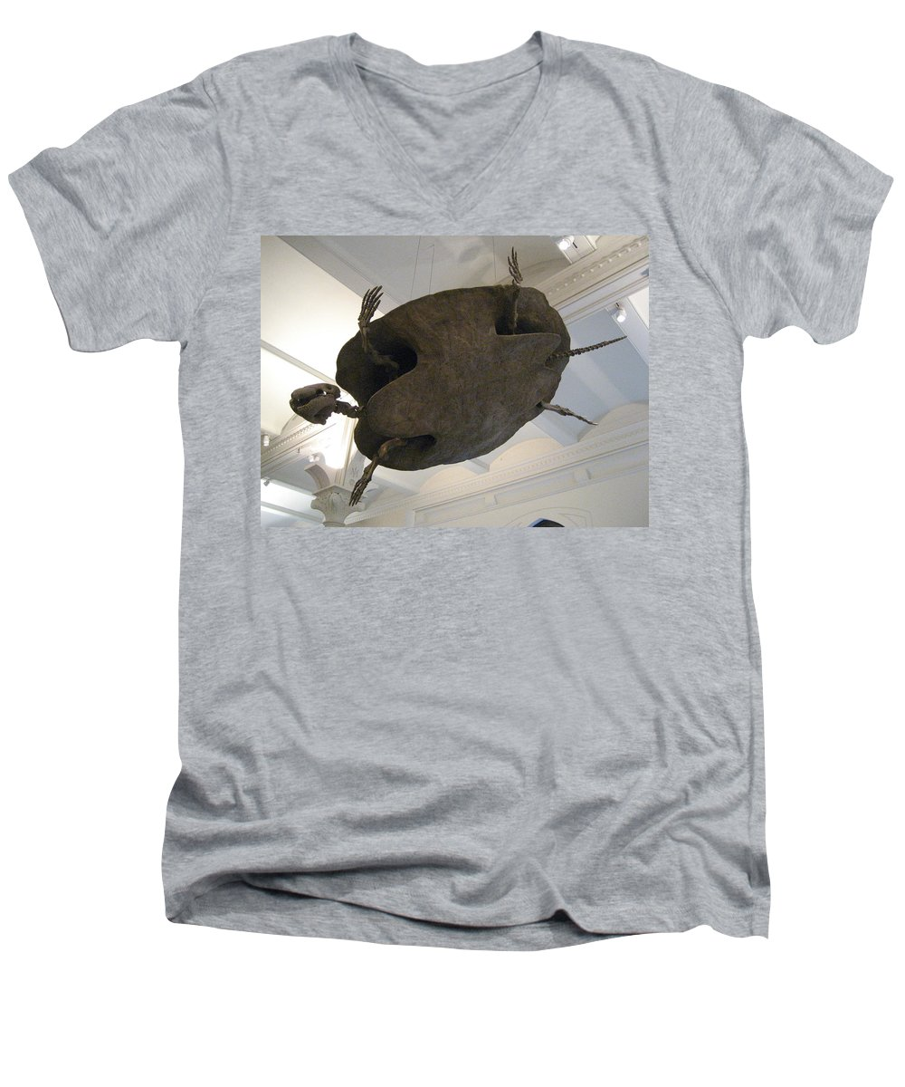 Turtle Men's V-Neck T-Shirt featuring the photograph Turtle by Brian McDunn