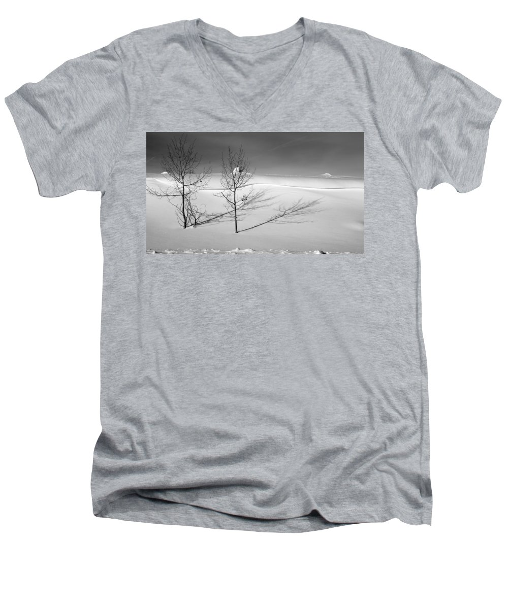 Nature Men's V-Neck T-Shirt featuring the photograph Twins by Skip Hunt