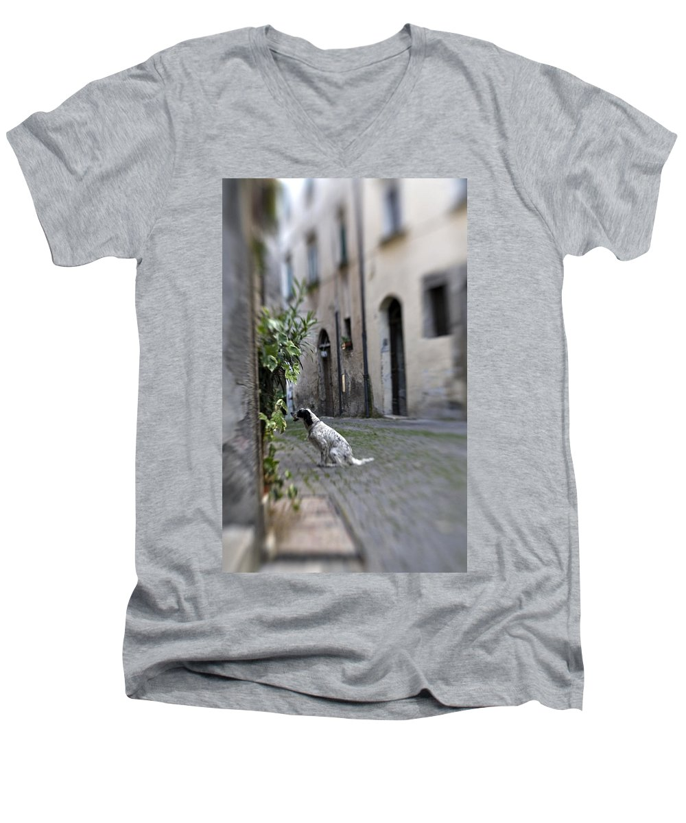 Dog Men's V-Neck T-Shirt featuring the photograph Waiting by Marilyn Hunt