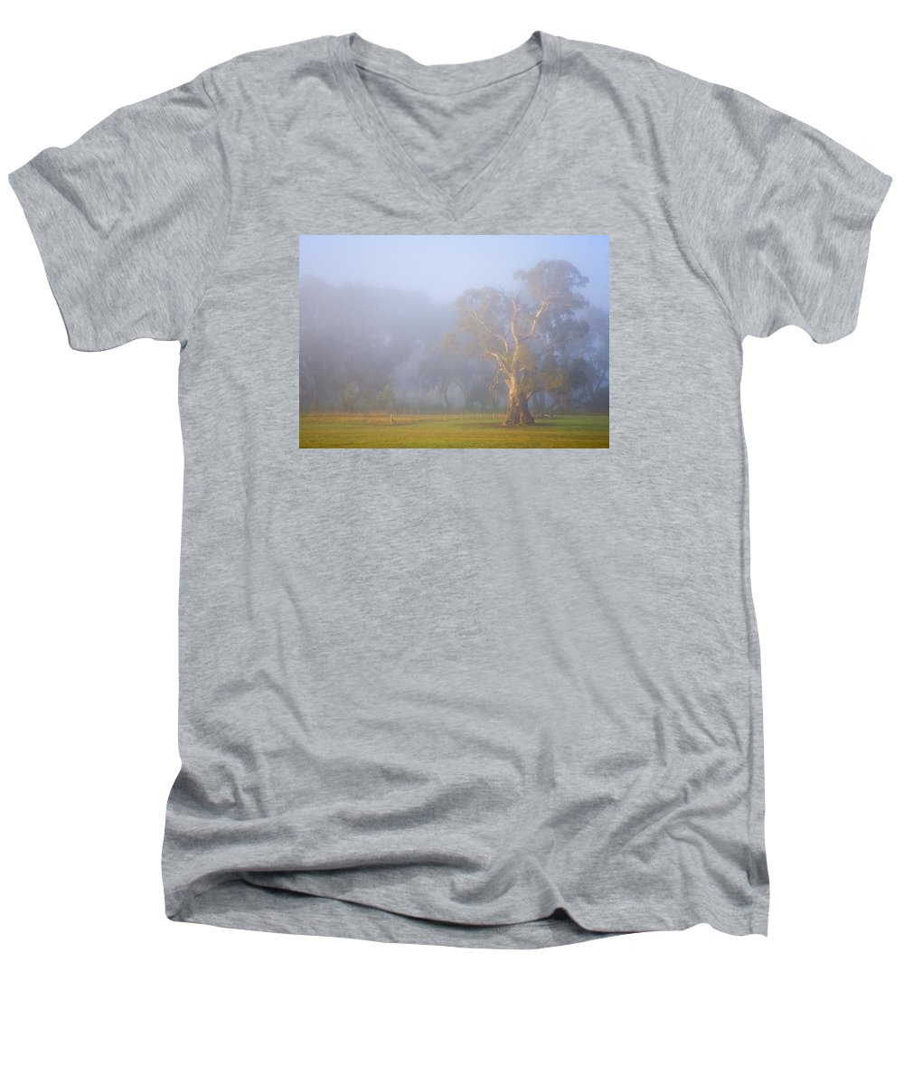Tree Men's V-Neck T-Shirt featuring the photograph White Gum Morning by Mike Dawson
