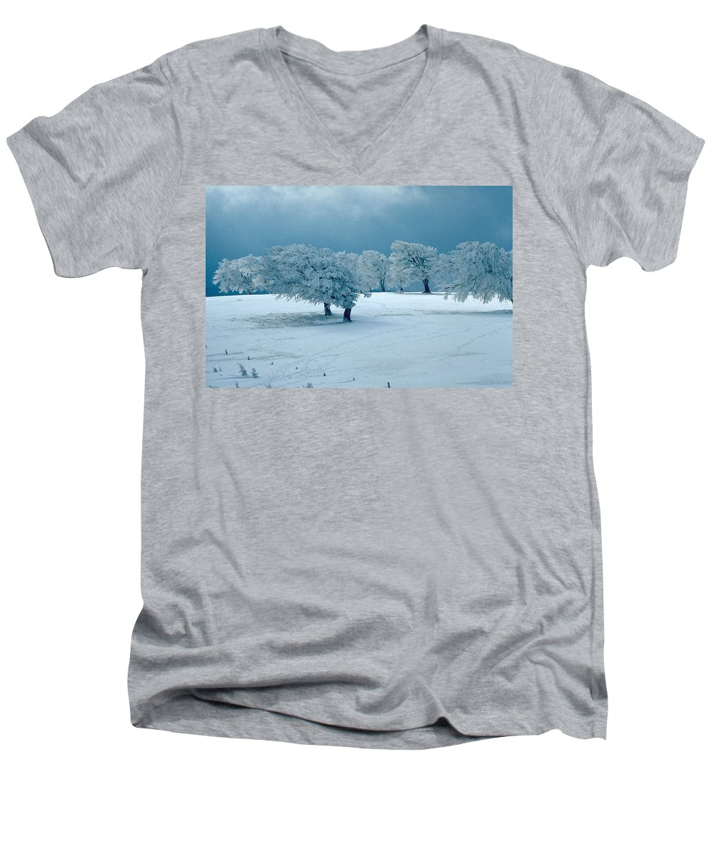 Winter Men's V-Neck T-Shirt featuring the photograph Winter Wonderland by Flavia Westerwelle