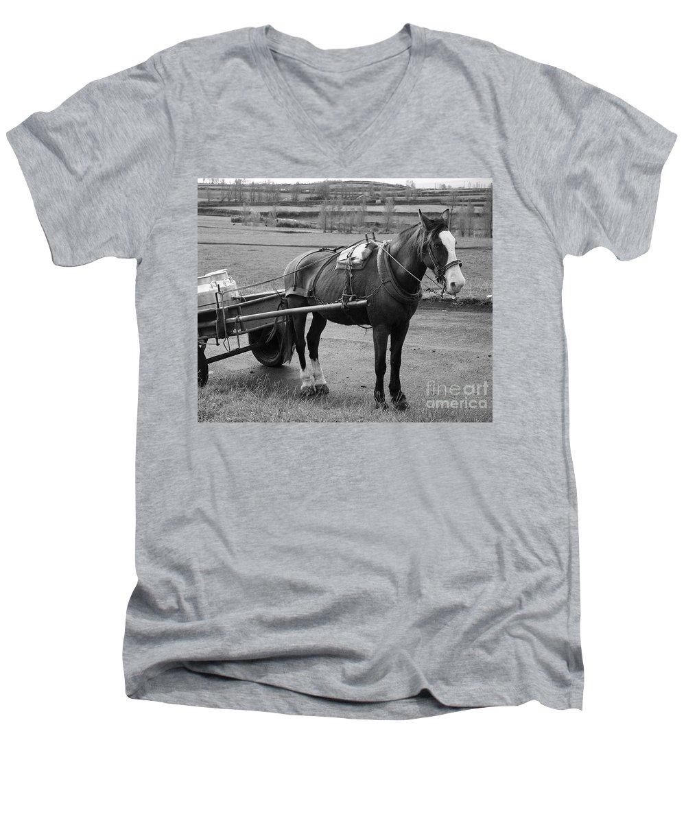 Cart Men's V-Neck T-Shirt featuring the photograph Work Horse And Cart by Gaspar Avila